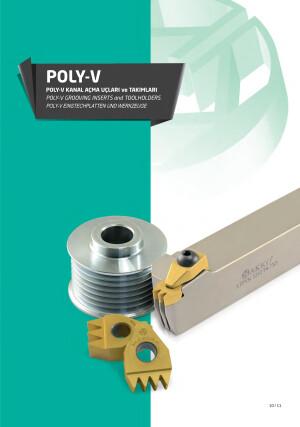 Poly-V