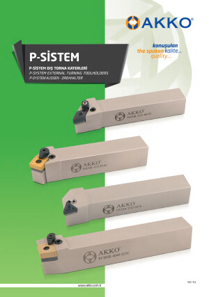 P-systeem